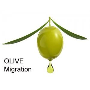 Olive-Migration...
